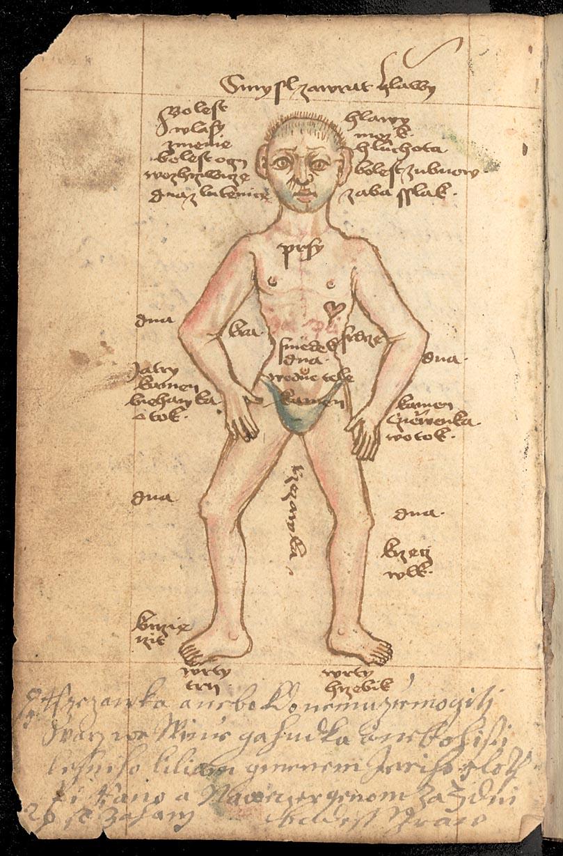 Jádro vybrané z mnohých knih lékařských